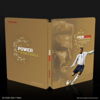 PES 2019 David Beckham Edition (PS4)